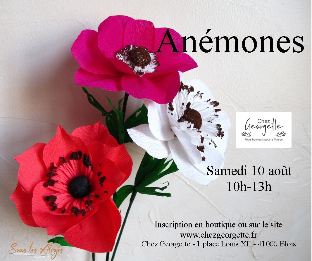 Anemones Août 2019_Sous les alizes