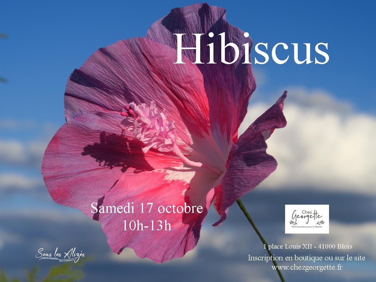 Hibiscus 2020 10_Sous les alizes